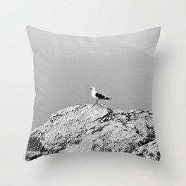Patagonia Throw Pillow