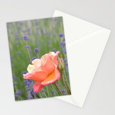 Peach Roses and Lavender Flowers Stationery Cards