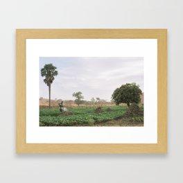 Ghana Fields Framed Art Print