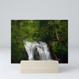 Scenic Waterfall in a Forest Mini Art Print