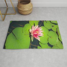 Waterlily In Pond - Beautiful Lotus Flower Rug
