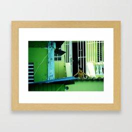 las casas verdes  Framed Art Print