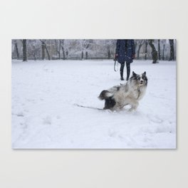 Happiest Dog in New York Canvas Print
