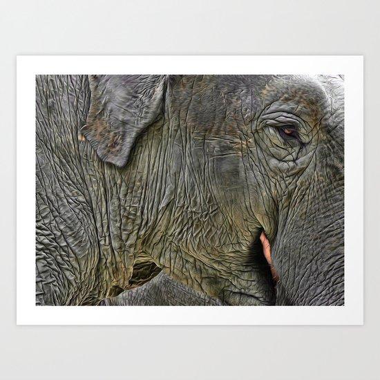 Elephant Closeup  Art Print
