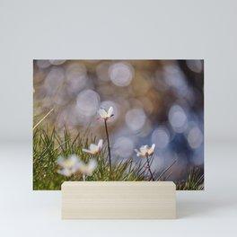 Mountains flowers. Endemic Mini Art Print