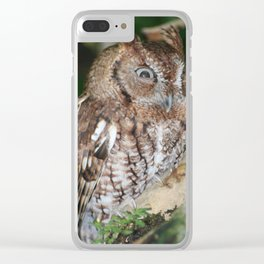 Eastern Screech Owl Clear iPhone Case