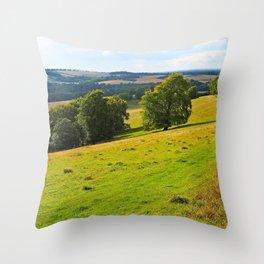 The Meon Valley Throw Pillow