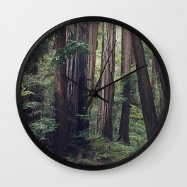 The Redwoods at Muir Woods Wall Clock