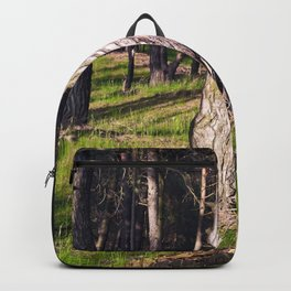 GREEN FOREST Backpack