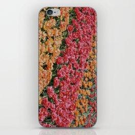 Tulpen Blüten iPhone Skin