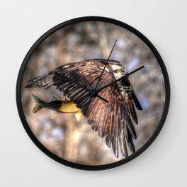 Osprey with Prey  Wall Clock