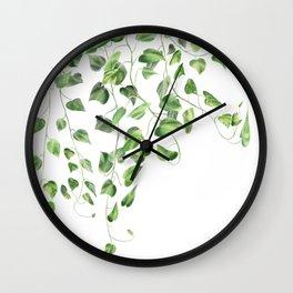 Golden Pothos - Ivy Wall Clock