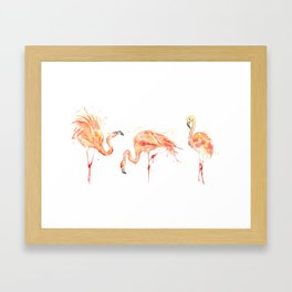 Flamingos Series - Flamingo Dance III Framed Art Print