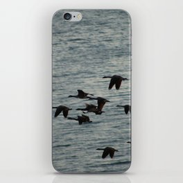 Canadian Geese iPhone Skin