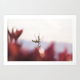 L'olivier Art Print