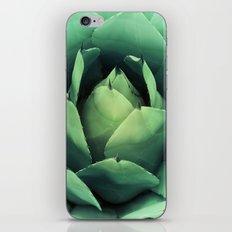 CACTUS VI iPhone & iPod Skin