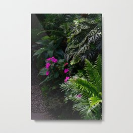 Tropical garden Metal Print
