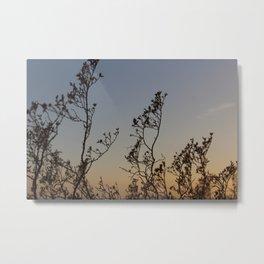 Desert Sunset Heat Metal Print