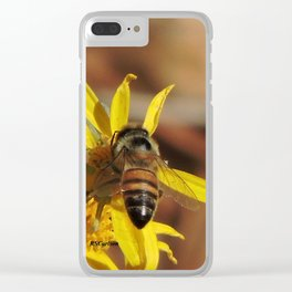 Desert Sunflower Pollen Picker Clear iPhone Case