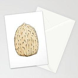 Almond Nut Stationery Cards