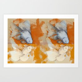 Narcissus Goldfsih Art Print