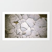 shell Art Prints featuring Shell by CrookedHeart