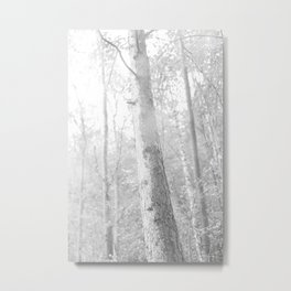 fog in the forest, black and white photo Metal Print