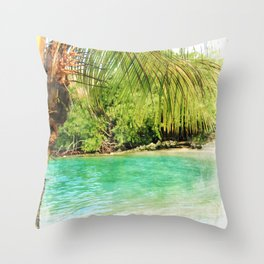 For A Brief Moment Throw Pillow
