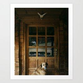Dog in Cabin Art Print