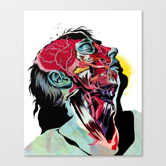 Anatomy Quain  Canvas Print