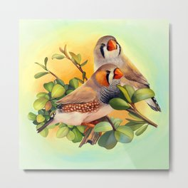Zebra finches realistic painting Metal Print