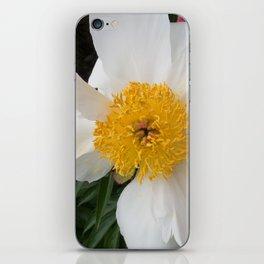 White Beauty by Teresa Thompson iPhone Skin