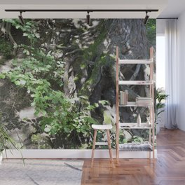 Roots and a tree 1 Wall Mural