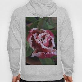 Fringed Tulip Hoody