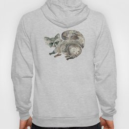 Raccoon – Warm Grey Palette Hoody
