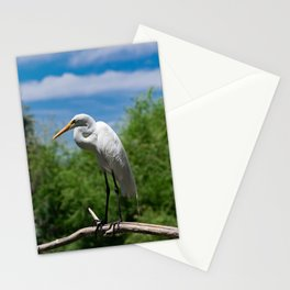 Great Egret Two - Utah Stationery Cards