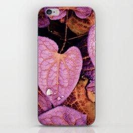 Fallen Leaves With Dew iPhone Skin