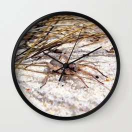 Watercolor Spider, Wolf Spider 05, Janes Island, Maryland Wall Clock