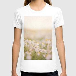 Spring Mornings White Daisies T-shirt