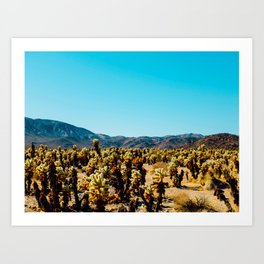 Desert Cactus Field Landscape With Blue Sky Art Print