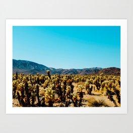 Desert Cactus Field Landscape With Blue Sky Art Print