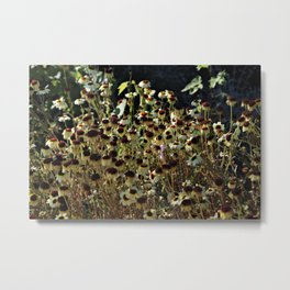 Autumn is coming now Metal Print