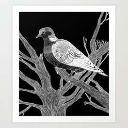 Inverted Turtledove Art Print