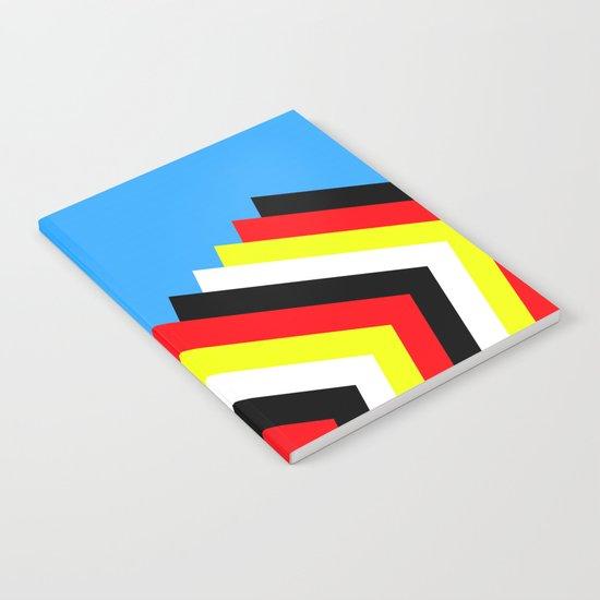 Flies Notebook