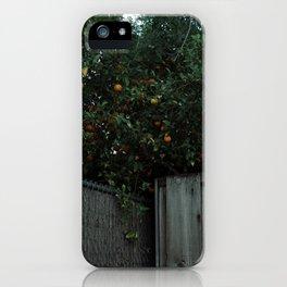 Overlooked iPhone Case