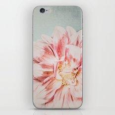 Pink Blush Flower iPhone & iPod Skin