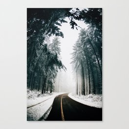 Standing in snow Canvas Print