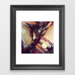 Catwoman Framed Art Print