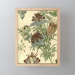 Spanish Fennel Flower Framed Mini Art Print