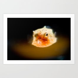 Glowy Cowfish Art Print